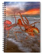 Nature Of The Game Spiral Notebook