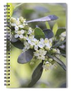 Nature Path Flower Spiral Notebook