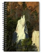Nature Perfect Carving Spiral Notebook