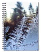 Nature Repeats Itself Spiral Notebook