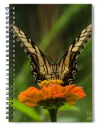 Nature Stain Glass Spiral Notebook