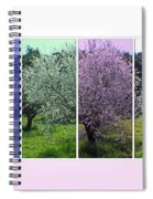 Nature Stripes Spiral Notebook