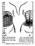 Nature Versus Corsets, 1903 Spiral Notebook