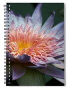 Nature's Baroque Spiral Notebook
