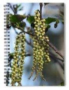 Nature's Beadwork Spiral Notebook
