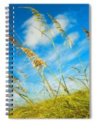 Nature's Beauty Spiral Notebook