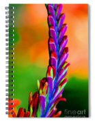Nature's Colors Spiral Notebook
