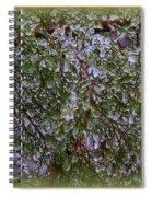 Natures Crystals Spiral Notebook