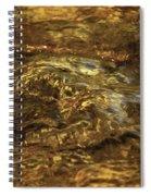 Natures Fresh Water Fountain Spiral Notebook