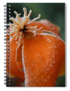 Natures Frost Spiral Notebook