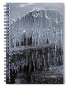 Natures Frozen Cathedral Sculpture Spiral Notebook