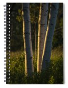 Natures Glow Spiral Notebook