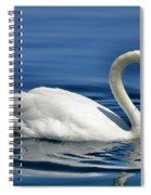 Nature's Grace Spiral Notebook