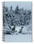 Natures Handywork - Snowstorm - Snow - Trees Spiral Notebook