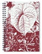Nature's Heart 2 Spiral Notebook