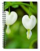 Nature's Hearts Spiral Notebook