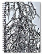 Natures Ice Sketch Abstract Spiral Notebook