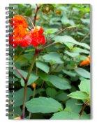 Nature's Jewel Spiral Notebook