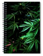Nature's Medicine Spiral Notebook