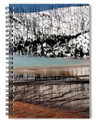 Nature's Mosaic I Spiral Notebook