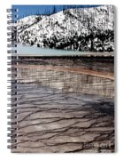 Nature's Mosaic II Spiral Notebook