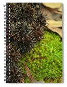 Nature's Moss And Sweetgum Pods Spiral Notebook