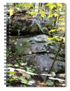 Nature's Mossy Boulders Spiral Notebook