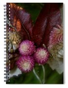 Nature's Ornament Spiral Notebook