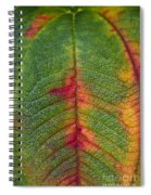 Natures Ornaments Spiral Notebook
