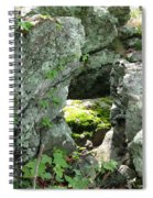 Natures Peephole Spiral Notebook