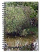 Nature's Pond Spiral Notebook