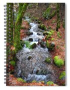 Nature's Rush Spiral Notebook