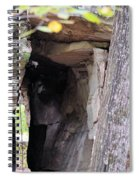 Nature's Sandstone Canopy Spiral Notebook