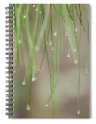 Nature's Soft Reflections Spiral Notebook