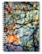 Natures Stained Glass Spiral Notebook