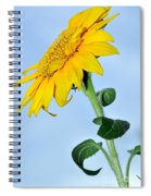 Nature's Sunshine Spiral Notebook