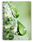 Nature's Teardrops Spiral Notebook
