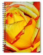 Nature's Vivid Colors Spiral Notebook