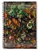 Nature's Window Spiral Notebook