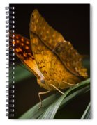 Nature's Wonders  Spiral Notebook