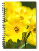 Natures Yellow Spiral Notebook