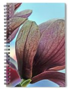 Nature's Zenith Spiral Notebook