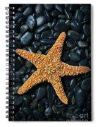 Nautical - Starfish On Black Rocks Spiral Notebook