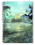 Nautical Treasures Spiral Notebook