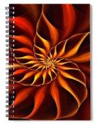 Nautilus Fractalus Fire Spiral Notebook