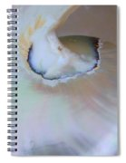 Nautilus Sea Shell Spiral Notebook