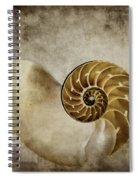 Nautilus Shell Spiral Notebook