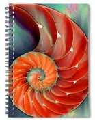 Nautilus Shell - Nature's Perfection Spiral Notebook