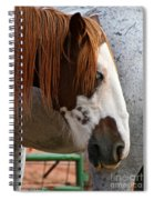 Navajo Paint Spiral Notebook