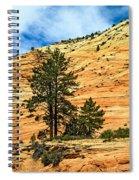 Navajo Sandstone Spiral Notebook